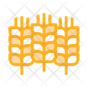 Natural Wheat Ears Icon