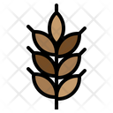 Cereal Food Plant Icon