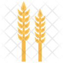 Wheat Gram Maize Icon