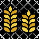 Wheat Barley Branch Icon