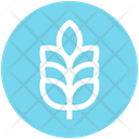 Wheat Grain Agriculture Icon