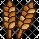 Wheat Grain Wheat Grain Icon