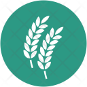 Wheat Grain Ear Icon