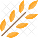 Wheatm Wheat Grass Wheat Icon