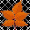 White Ash Leafy Twig Autumn Leaf Icon