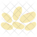 White Beans Seeds Pulses Icon
