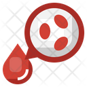 White Blood Cell Blood Cells Blood Drop Icon