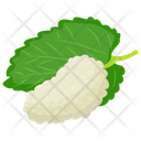 White Mulberry White Berries Berries Icon