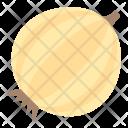 White Onion Bulb Icon