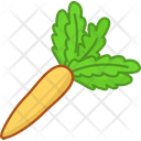 Healthy Fresh Diet Icon