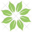 Whorled Arrangement Wildflower Icon