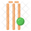Cricket Wicket Cricket Equipment Icon