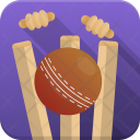 Wicket Out Icon