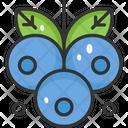 Wild Blueberry Fruit Healthy Icon
