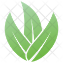 Wild Leaves Design Icon