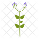 Wildflowers- Icon
