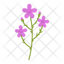 Wildflowers Icon