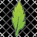 Willow Leaf Logo Leaf Leaf Logo Icon