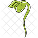 Wilting Botanical Plant Plant Wilting Icon