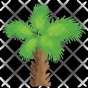 Windmill Palm Icon