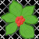Wineberries Icon