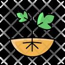 Plant Winery Wine Icon