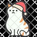 Winter Cute Cat Icon
