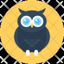 Wisdom Owl Sage Icon