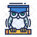 Wisdom Owl Scroll Icon