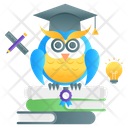 Wisdom Education Wisdom Knowledge Wisdom Icon