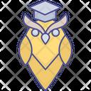 Wisdom Graduation Education Knowledge Icon