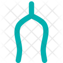 Wishbone Bone Turkey Icon