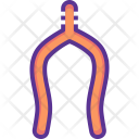 Wishbone Icon