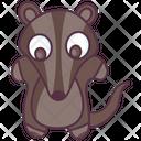 Animal Wombat Wild Animal Icon