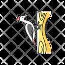 Woodpecker Animal Wildlife Icon