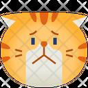 Worry Emoticon Cat Icon