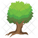 Wright Acacia Tree Icon