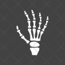 X Ray Scan Icon