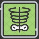 X-ray Icon