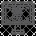 Medicine Bone Skeleton Icon
