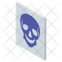 X Ray Icon