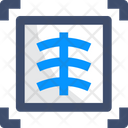 A X Ray Icon