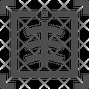 X Ray Icon