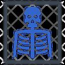Bones Medical Radiology Icon
