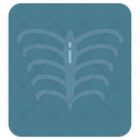 Hospital Medical Radiography Icon