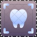 X Ray X Rays Dental Icon