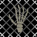 X Ray Hand Skull Icon