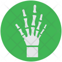 Hand Xray Skeleton Icon