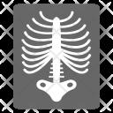 X Ray Radiology Radioscopy Icon