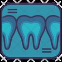 Teeth X Ray Checking Icon